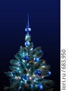 Новогодняя елка. Стоковое фото, фотограф Евгений Ильдутов / Фотобанк Лори