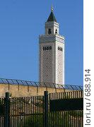 Купить «Мечеть. Сиди Бу Саид. Тунис.», фото № 688914, снято 25 августа 2008 г. (c) Руслан Керимов / Фотобанк Лори