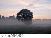 Туман. Стоковое фото, фотограф Levin Alexandr / Фотобанк Лори