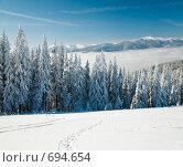 Купить «Зимний горный пейзаж», фото № 694654, снято 2 февраля 2009 г. (c) Юрий Брыкайло / Фотобанк Лори