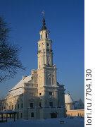 Купить «Ратуша. Каунас. Литва», фото № 704130, снято 5 января 2009 г. (c) Сергей Лисов / Фотобанк Лори