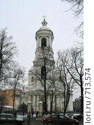 Купить «Князь-Владимирский собор в Санкт-Петербурге», фото № 713574, снято 14 февраля 2009 г. (c) Александр Секретарев / Фотобанк Лори