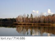 Купить «Осеннее озеро в лесу», фото № 714686, снято 27 октября 2008 г. (c) Сергей Лысенков / Фотобанк Лори