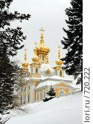 Купить «Церковный флигель в Петергофе зимой», фото № 720222, снято 22 февраля 2009 г. (c) Корчагина Полина / Фотобанк Лори