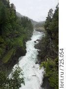 Купить «Водопад», фото № 725054, снято 4 августа 2008 г. (c) Харитонова Ольга / Фотобанк Лори