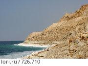 Купить «Мертвое море», фото № 726710, снято 25 января 2008 г. (c) Сергей Пономарев / Фотобанк Лори
