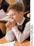 Купить «Ученик в начальной школе», фото № 729262, снято 24 февраля 2009 г. (c) Федор Королевский / Фотобанк Лори