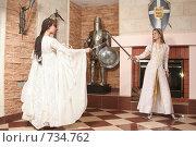 Купить «Девушки в рыцарском замке», фото № 734762, снято 8 февраля 2009 г. (c) Евгений Батраков / Фотобанк Лори