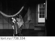 """Купить «Спектакль """"Клопомор"""" театра-студии """"Человек""""», фото № 738334, снято 26 февраля 2009 г. (c) Владимир Катасонов / Фотобанк Лори"""