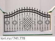 Купить «Чугунная ограда», фото № 741778, снято 4 января 2009 г. (c) Яков Филимонов / Фотобанк Лори