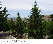 Вид на горы (2007 год). Стоковое фото, фотограф Венюков Вячеслав / Фотобанк Лори