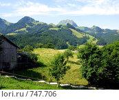 Купить «Вид на Альпы из знаменитой швейцарской деревушки Грюйер, родины швейцарского сыра», фото № 747706, снято 25 июля 2008 г. (c) Светлана Кудрина / Фотобанк Лори