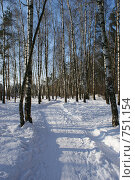 Купить «Дорога в берёзовом лесу», фото № 751154, снято 22 февраля 2009 г. (c) Купченко Владимир Михайлович / Фотобанк Лори
