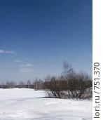 Купить «Зимний пейзаж», фото № 751370, снято 14 марта 2009 г. (c) Юрий Бельмесов / Фотобанк Лори