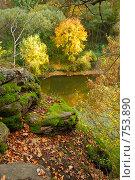 Купить «Прекрасная осень», фото № 753890, снято 8 октября 2008 г. (c) Мирослава Безман / Фотобанк Лори