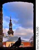 Окно крепости (2009 год). Стоковое фото, фотограф Андрей Григорьев / Фотобанк Лори