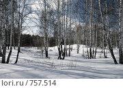 Купить «Зимний пейзаж», фото № 757514, снято 14 марта 2009 г. (c) Юрий Бельмесов / Фотобанк Лори