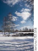 Купить «Зимний пейзаж», фото № 757518, снято 14 марта 2009 г. (c) Юрий Бельмесов / Фотобанк Лори