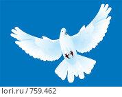 Купить «Порхающий в синем небе белый голубь», иллюстрация № 759462 (c) Александр Висляев / Фотобанк Лори