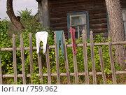 Колготы на заборе. Стоковое фото, фотограф Нездольева Мария / Фотобанк Лори