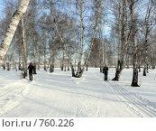 Купить «Лыжницы», фото № 760226, снято 23 февраля 2009 г. (c) Алексей Стоянов / Фотобанк Лори