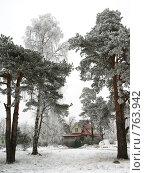 Зимний день в Разливе. Стоковое фото, фотограф Виталий Фурсов / Фотобанк Лори
