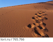 Купить «Песчаные дюны», фото № 765766, снято 23 мая 2018 г. (c) Leksele / Фотобанк Лори