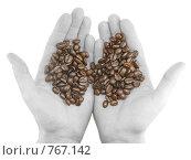 Купить «Зерна кофе в  черно-белых ладонях. Изолировано», фото № 767142, снято 2 января 2009 г. (c) Vitas / Фотобанк Лори