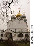 Купить «Новодевичий монастырь», фото № 768146, снято 5 апреля 2008 г. (c) Julia Nelson / Фотобанк Лори