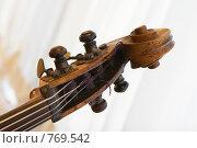 Купить «Скрипка», фото № 769542, снято 6 марта 2009 г. (c) Николай Туркин / Фотобанк Лори