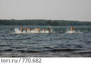 Бегущие по волнам. Стоковое фото, фотограф Наталья Щербань / Фотобанк Лори