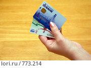 Купить «Пластиковые карточки в руке», фото № 773214, снято 27 марта 2009 г. (c) Татьяна Дигурян / Фотобанк Лори
