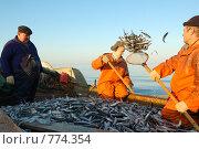 Купить «Артель рыбаков на ловле корюшки», фото № 774354, снято 7 мая 2006 г. (c) Vladimir Kolobov / Фотобанк Лори
