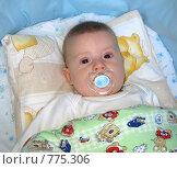 Купить «Младенец с соской в кроватке», фото № 775306, снято 21 марта 2009 г. (c) Юлия Подгорная / Фотобанк Лори