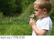 Купить «Мальчик с одуванчиком», фото № 778510, снято 4 июня 2006 г. (c) Losevsky Pavel / Фотобанк Лори