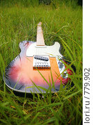 Купить «Гитара в траве», фото № 779902, снято 22 октября 2019 г. (c) Losevsky Pavel / Фотобанк Лори