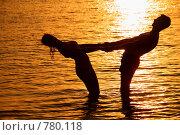 Купить «Силуэт пары в море», фото № 780118, снято 7 декабря 2019 г. (c) Losevsky Pavel / Фотобанк Лори