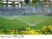 Купить «Автополив газона в городском парке. Утро», фото № 780270, снято 29 июля 2007 г. (c) Demyanyuk Kateryna / Фотобанк Лори