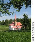 Приоратский дворец (2008 год). Редакционное фото, фотограф St.Tatyana / Фотобанк Лори
