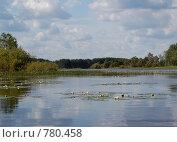 Купить «Река Малога», фото № 780458, снято 1 августа 2008 г. (c) Елена Азарнова / Фотобанк Лори