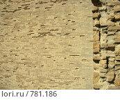 Купить «Кирпичная стена», фото № 781186, снято 21 марта 2009 г. (c) Shawn A. Nelson / Фотобанк Лори