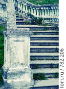 Купить «Лестница Нижнего парка Петергофа», фото № 782206, снято 14 августа 2008 г. (c) Алексей Ёё / Фотобанк Лори