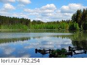 Старые, разрушенные мостки на озере. Стоковое фото, фотограф Елена Реднева / Фотобанк Лори