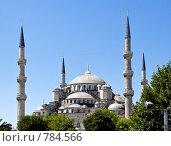 Голубая мечеть, Стамбул, Турция (2008 год). Стоковое фото, фотограф Ирина Рубанова / Фотобанк Лори