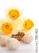Букет нарциссов в плетеной корзинке и пасхальные яйца. Стоковое фото, фотограф Sergii Korshun / Фотобанк Лори