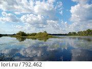 Купить «Река Малога. облака отражаются в реке.», фото № 792462, снято 1 августа 2008 г. (c) Елена Азарнова / Фотобанк Лори