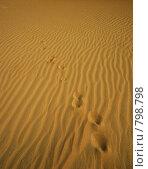 Купить «Следы на песке», фото № 798798, снято 23 ноября 2006 г. (c) Оксана Борц / Фотобанк Лори