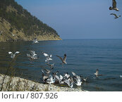Купить «Озеро Байкал. Восточный берег острова Ольхон», фото № 807926, снято 6 сентября 2007 г. (c) Andrey M / Фотобанк Лори