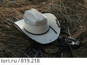 Белая шляпа на сене. Стоковое фото, фотограф Любовь Похабова / Фотобанк Лори