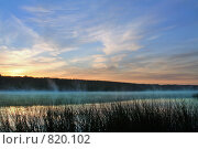 Купить «Река и тростники ярким утром в тумане», фото № 820102, снято 9 сентября 2007 г. (c) Aleksander Kaasik / Фотобанк Лори